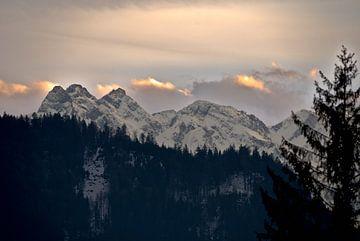 Alpenpanorama - Sonnenuntergang Allgäu im Winter von Thomas Wagner