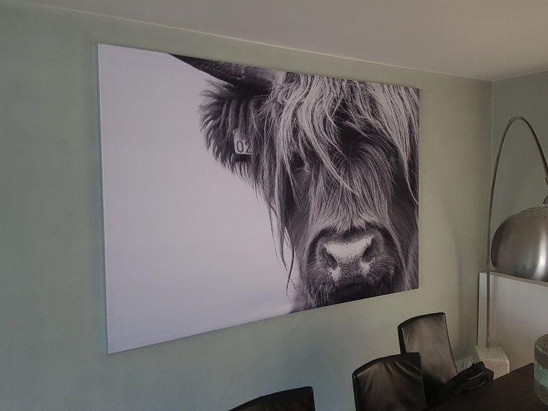 Klantfoto: Portret Schotse Hooglander zwart-wit van Sandra van Kampen, op print op doek