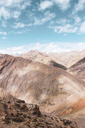 De Himalaya's in Ladakh