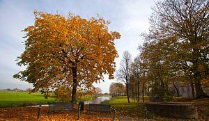 Herfst in Elburg