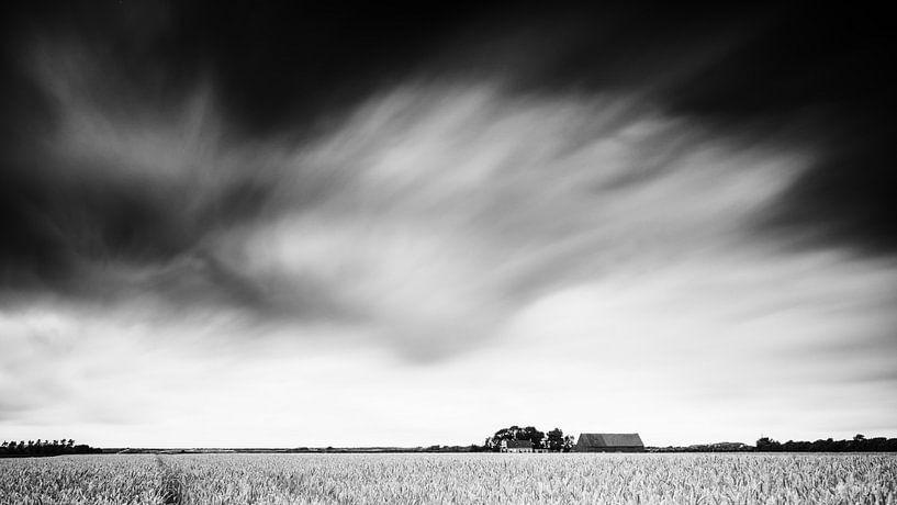 Graanveld (zwart wit). van Lex Schulte