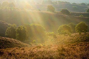 Sonnenaufgang auf der Posbank von Thomas Hofman