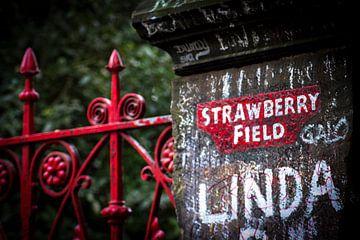 Strawberry Fields Forever van Karina Alvarenga