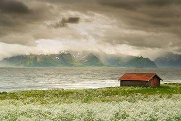 Mooie lichtval Vesteralen Noorwegen van Bas Verschoor