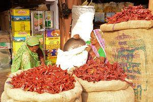 Geurende kruiden in de levendige bazaars van Jaipur van