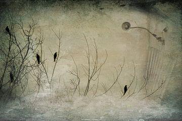 Abstrakte Vogelwelt van Heike Hultsch