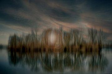 Samenvatting : Eiland in het meer van Michael Nägele