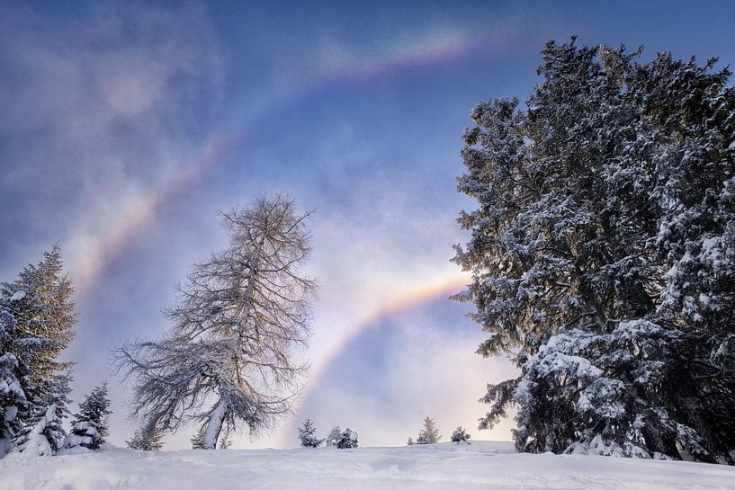 sneeuwboog van Fotografie Egmond