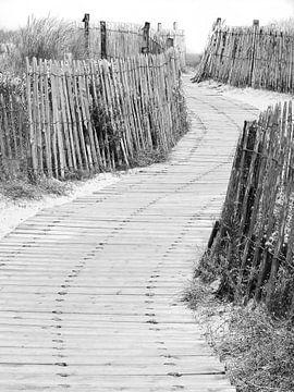 Naar het strand von Ton van Buuren