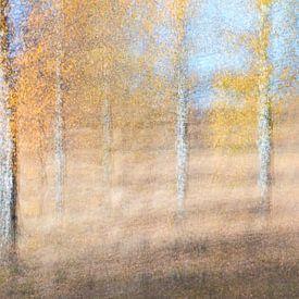 Birken in Bewegung von Teuni's Dreams of Reality