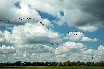 Hollands Landschap van Annelies Martinot