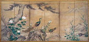 Kano Shoei. Vogels, bomen en bloemen