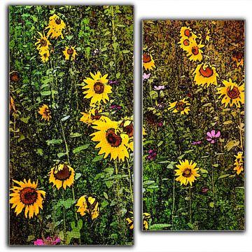 zonnebloemen in twee delen van Joke te Grotenhuis