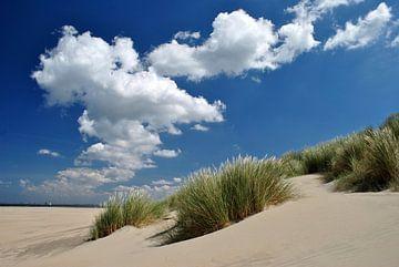 Dünen mit Wolkenhimmel van Susanne Herppich