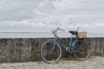 Op de fiets naar zee van Mark Bolijn