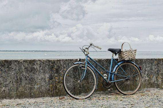 Op de fiets naar zee
