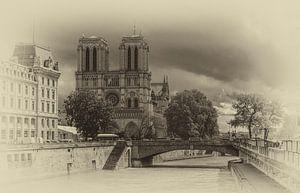 Notre Dame van Parijs van Toon van den Einde