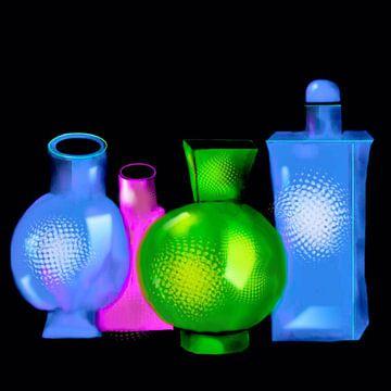 Vasen. van Raina Versluis