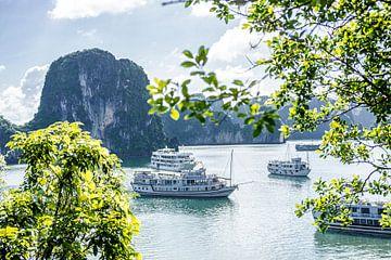 Uitzicht over een verzameling boten in Ha Long Bay in Vietnam van Niels Rurenga