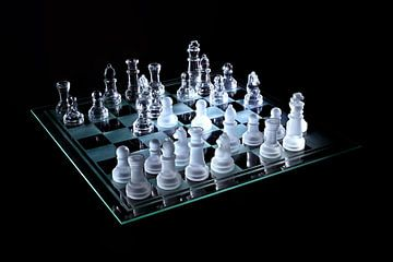 Doorzichtig schaakspel van Verrassende Fotografie