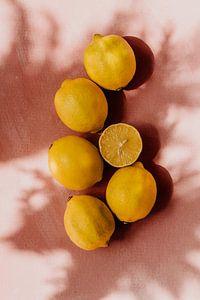 Sommerszene, gelbe Zitronen auf rosa Hintergrund   Teil 1
