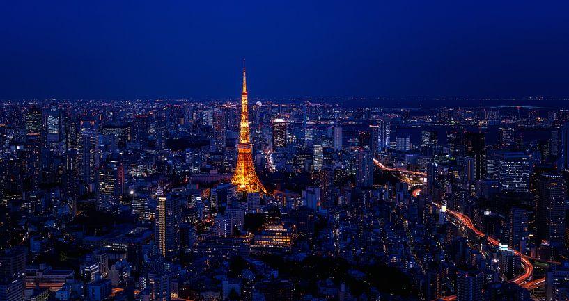 Tokyo Tower van Sander Peters Fotografie