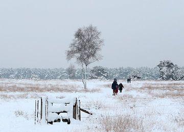 Sneeuwlandschap Breeveen van Jan Katsman