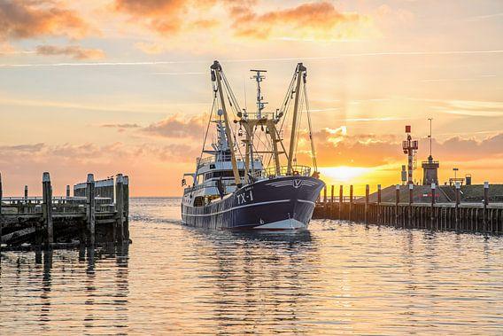 Kotter komt Texelse haven binnen tijdens zonsopkomst..
