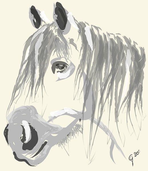Paard Big Jack van Go van Kampen