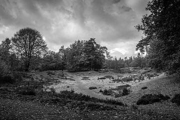 landschap in Drenthe von Karen Klein
