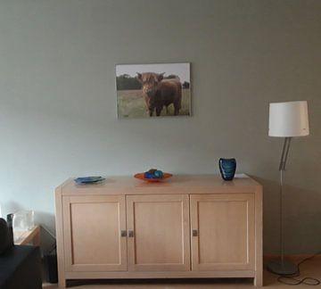 Klantfoto: schotse hooglander koe van Rick Van der bijl