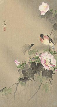 Vogel und Raupe von Ohara Koson