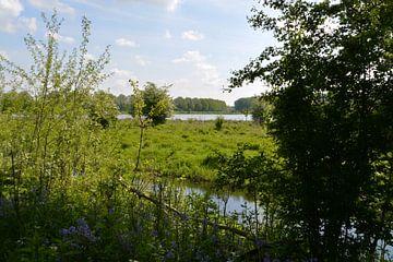 Blick auf ein Niedermoor im Broekpolder bei Vlaardingen von FotoGraaG Hanneke