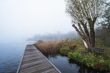 Kralingse plas in de mist II van Samantha van Leeuwen