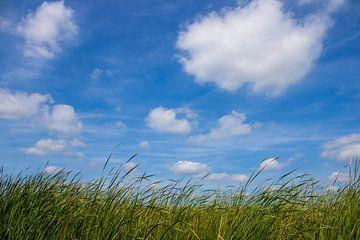 Gras en wolken van Rutmer Visser