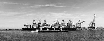 Rotterdam von Peter Hoogeveen