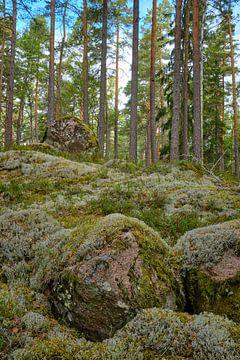Zweden 269 van Geertjan Plooijer