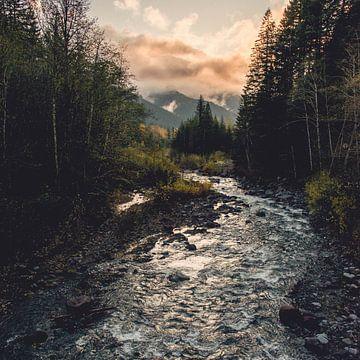 Forest River Adventure-Platz, Nature Magick  von PI Creative Art
