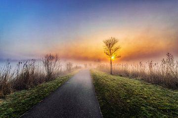 Zonsopkomst, wandelpad 1 van Marcel Kieffer