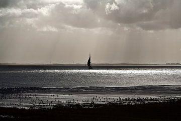 Blick auf das Wattenmeer von Schiermonnikoog von Marlon Mendonça Dias