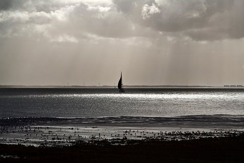 Uitzicht waddenzee vanaf Schiermonnikoog van Marlon Mendonça Dias