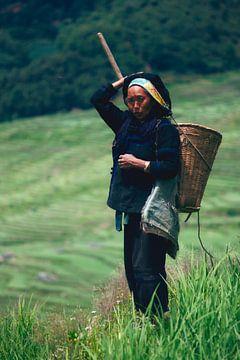 Chinese boerin op rijstveld I von André van Bel