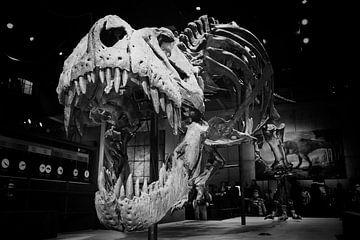 T-Rex-Kopf will Sie angreifen von Atelier Liesjes