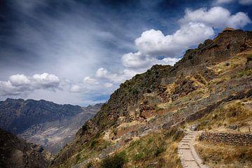 Ruïnes van Pisac Peru van Yvonne Smits
