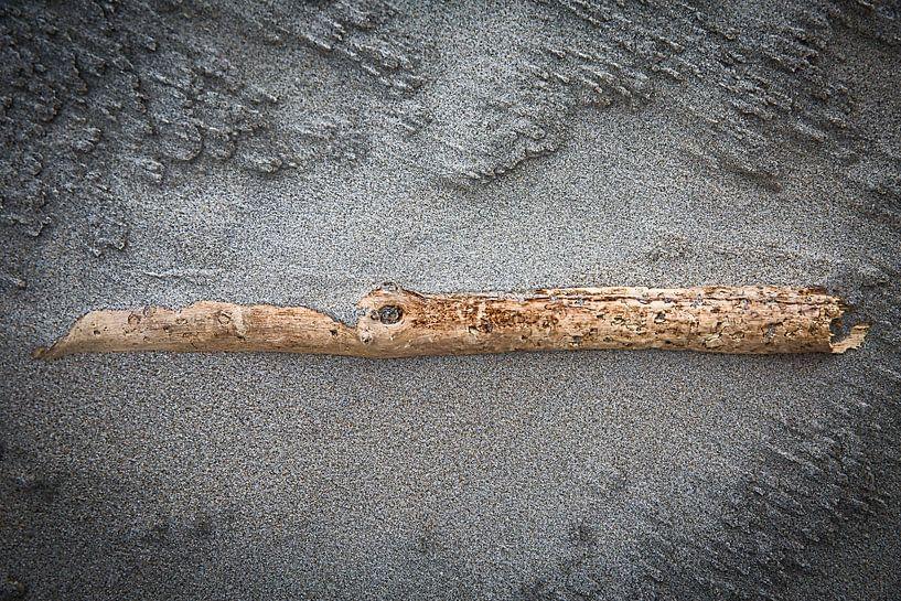am Strand gestrandet von Ed Dorrestein