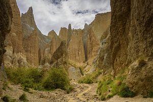 Clay Cliffs bij Omarara, Nieuw Zeeland