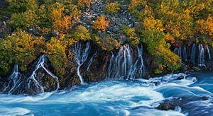 Hraunfossar IJsland van