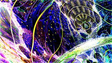 Chaos en schoonheid van Frank Heinz