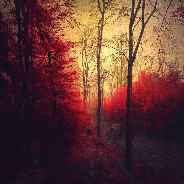Ruby Red Forest van Dirk Wüstenhagen