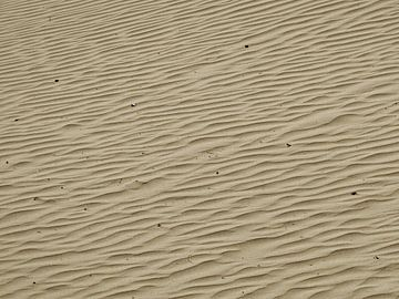 Zandstructuur in de duinen van Pieter Korstanje